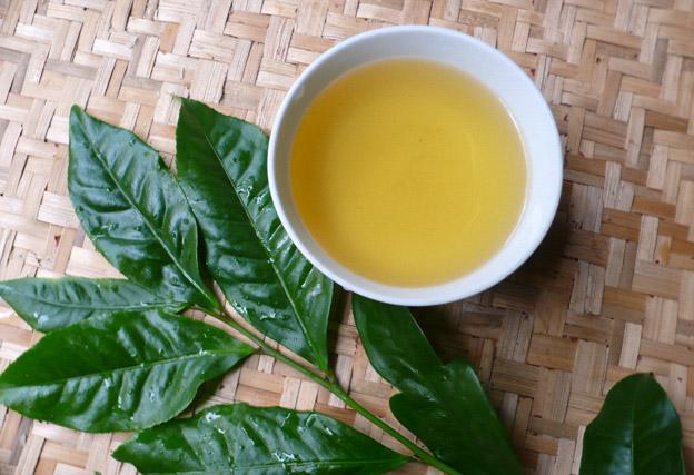 Sử dụng trà xanh là bí quyết trị mụn đầu đen tại nhà rất đơn giản